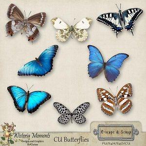 wm-cub-butterfliespreview1