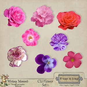 wm-fs1_flowerset1